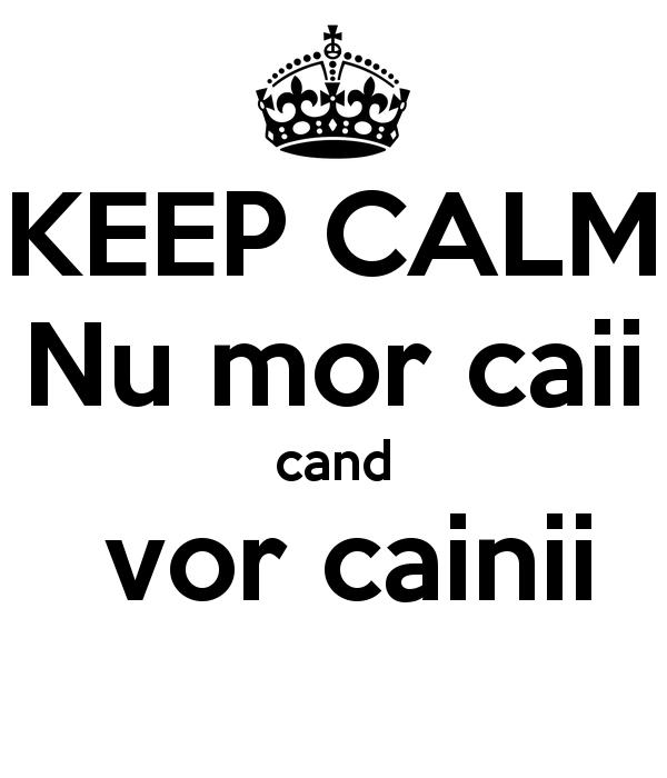 keep-calm-nu-mor-caii-cand-vor-cainii-3